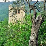 Photo of Torre Canvalle
