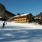 Photo de Hotel Les Sapins
