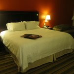 Foto de Hampton Inn Richmond Southwest - Hull Street