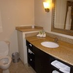Φωτογραφία: Holiday Inn Express Hotel & Suites Brooksville