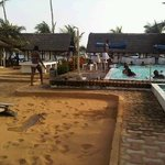Pool when crowded on Saturday with day users