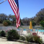 Patriotic pool view
