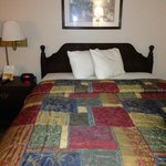 Bilde fra Red Roof Inn & Suites Augusta West
