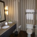 Holiday Inn Express Olive Branch Foto