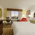 Hilton Garden Inn Denver South/Meridian Englewood