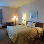 Foto di Americas Best Value Inn & Suites- Mount Vernon