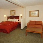 Photo de Comfort Inn & Suites Sugarloaf-Suwanee