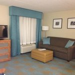Hampton Inn & Suites St. Louis at Forest Park resmi