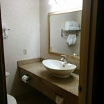Foto de Comfort Inn Dulles International Airport