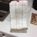 Grungy dish cloth
