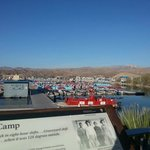 Lake Mohave Resort의 사진