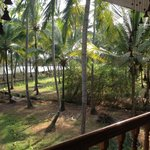 View from the balcony to backwaters
