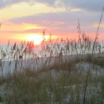 Sea oats and sand dunes at private beach entrance