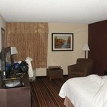 Hampton Inn Newark-Airport resmi