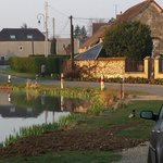 The village duck pond opposite
