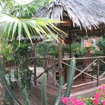 Tembo Village Resort Watamu resmi
