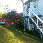 Surfers Haven Guesthouseの写真