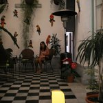 Photo of Los Jardines Colgantes de Babilonia Hostel Montevideo