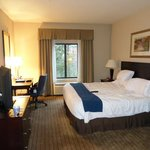 Billede af Holiday Inn Express & Suites Powder Springs