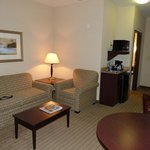 Φωτογραφία: Holiday Inn Express & Suites Powder Springs