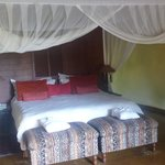Photo of Shishangeni Private Lodge