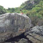 Cat Ba Travels - Private Day Tours