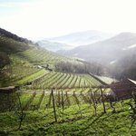 Destination Basque Country - Private Day Tours