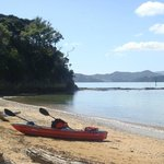 Paihia Pacific Resort Hotel照片