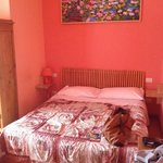 Φωτογραφία: Bed & Breakfast San Lorenzo