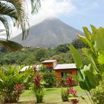 Foto de Erupciones Inn Bed & Breakfast