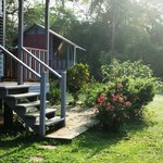 Bilde fra Lower Dover Field Station and Eco Jungle Lodge