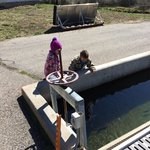 The fish hatchery is a fantastic place for children.