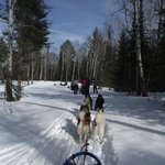 Wintergreen Dogsled Lodge resmi