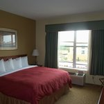 Country Inn & Suites By Carlson Intercontinental Airport South resmi