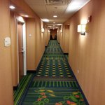 Foto de Fairfield Inn & Suites Ottawa Starved Rock Area
