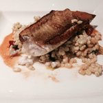 'gurnard and pearl barley with butter tomato sauce special' for dinner in the hotel restaurant
