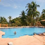 Photo of Hotel Los Mangos