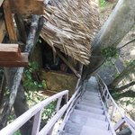 stairs leading up to tree house bungalow