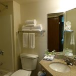 Zdjęcie Holiday Inn Express Hotel & Suites Branson 76 Central