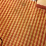 Foto Econo Lodge Inn & Suites Near Legoland