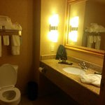 Foto van Embassy Suites East Peoria - Hotel & RiverFront Conf Center