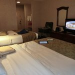 Foto BEST WESTERN PLUS South