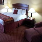Photo de BEST WESTERN PLUS Kansas City Airport-KCI East