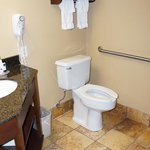 Bathroom Handicap Accessible