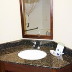 Bathroom: Sink & Mirror