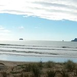 Foto Beachside Resort Whitianga
