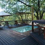 Mankwe Bush Lodge의 사진