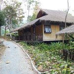 Foto di Hmong Hilltribe Lodge