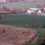 view of the farmland (Fall)