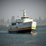 One of the many ferry boats that come in and out of Tiburon each day. $22 adult roundtrip fare.